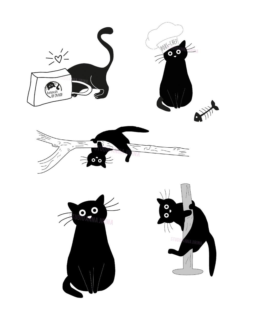 kattencafe op z'n kop