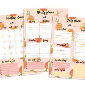 peachy planner kit