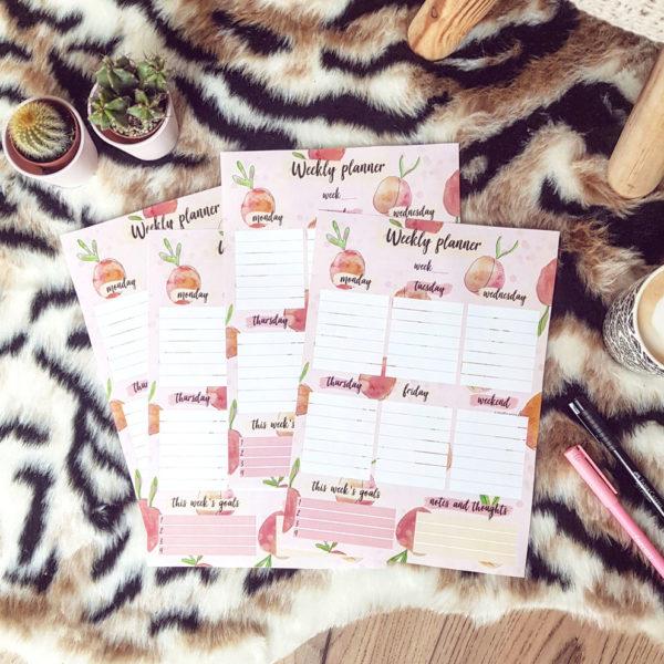 Design voor de peachy planner kit